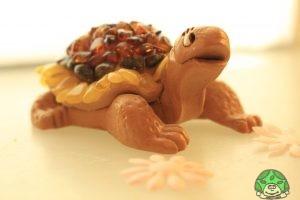 Schildkröte mit Bernstein